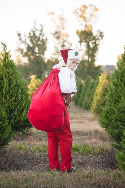 Santa Headshots 2015