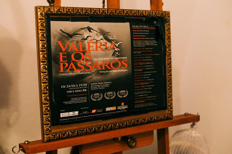 Allan Bravos - Fotografia de Teatro - Valeria e os Passaros-11.jpg