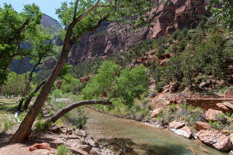 Virgin River in the Narrows, Zion National Park, Utah