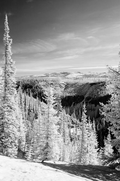 20130511-12 Yellowstone IR 001.jpg