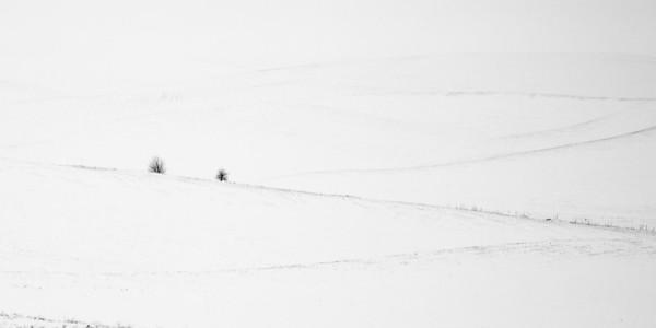 WinterGraphic2014