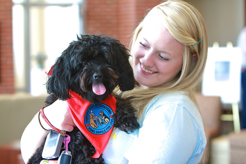 20130818_therapydogs_MH017.jpg