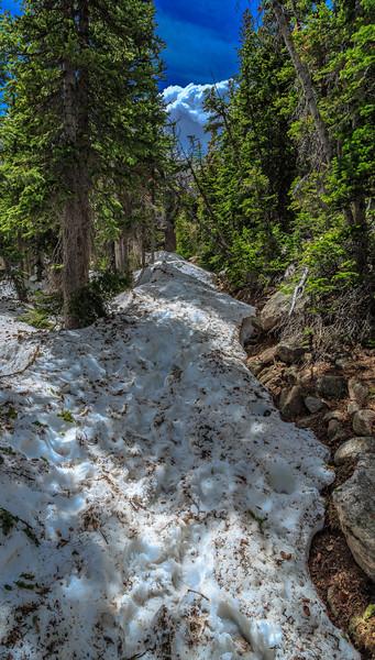 Snow-Loaded
