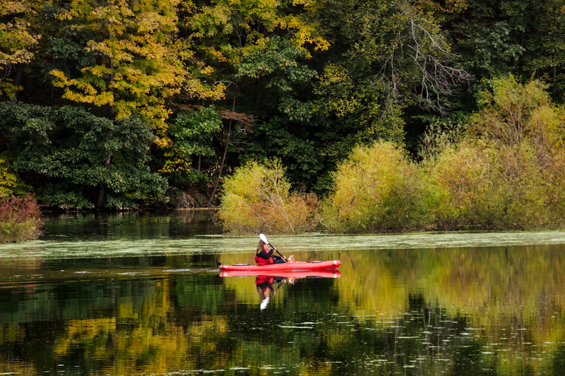 1062 - Autumn 2016 - Lady Kayaking at Speedwell Forge (p).jpg