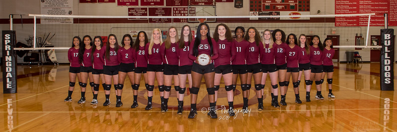 2015 SHS Volleyball