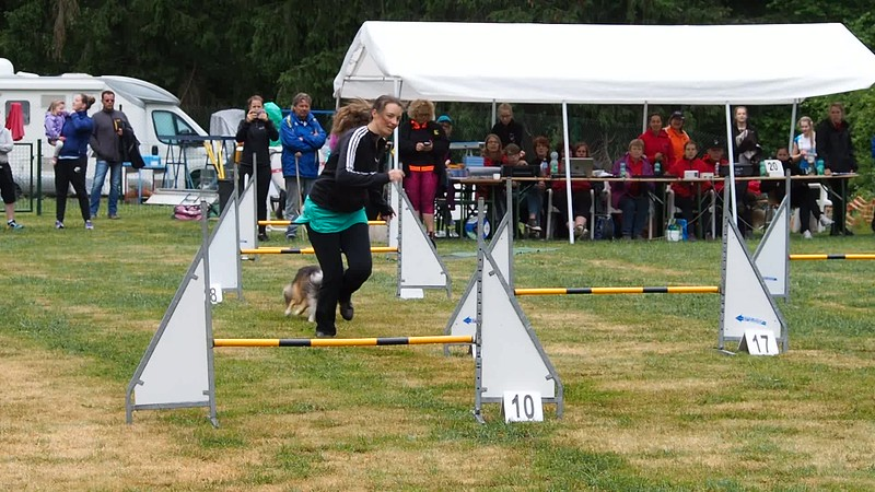 Agility Finale Fabienne Thines