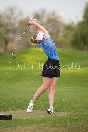 DCGA Pictures 2017