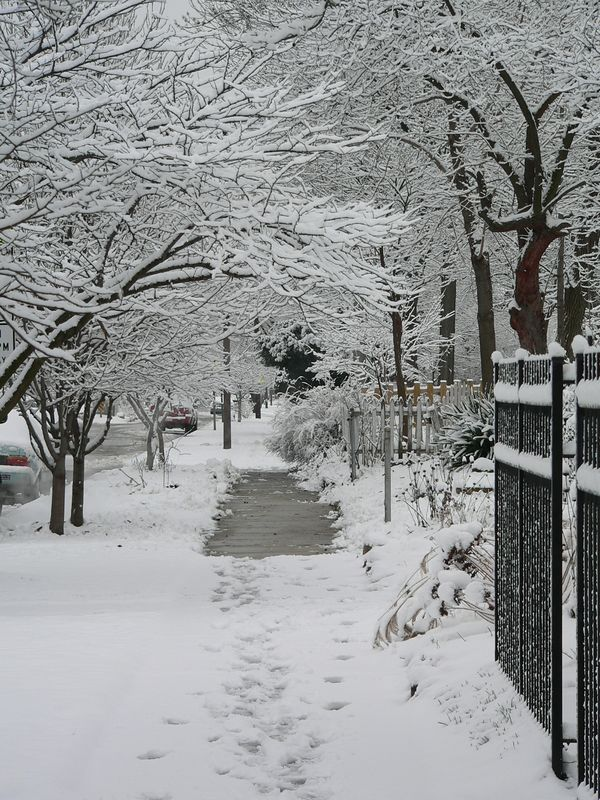 January 9 003.jpg