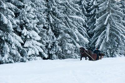 Horse drawn sleigh on Gubalowka Hill, Zakopane, Tatra Mountains, Podhale Region, Poland