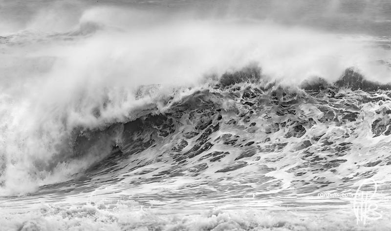 sm teddy waves_M4D9829.jpg