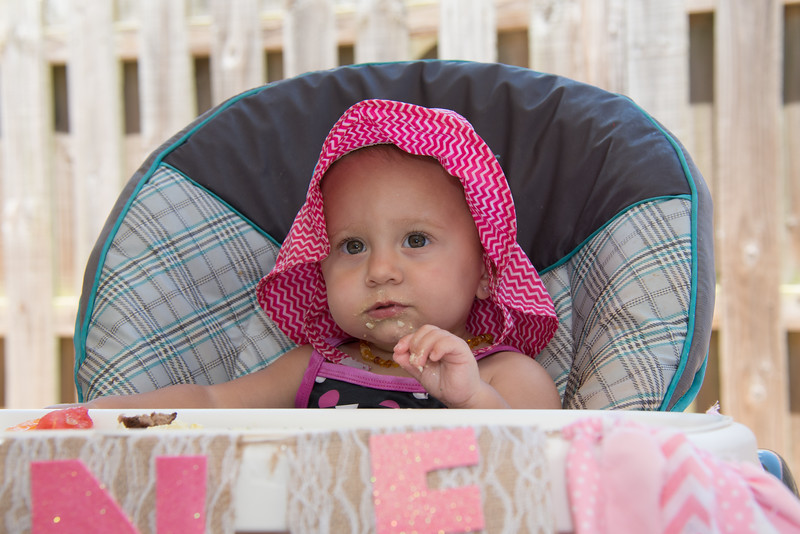 Lila's 1st Bday Party-161.jpg