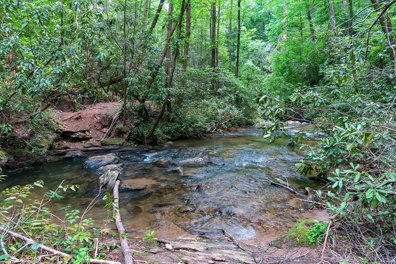 Spencer Branch Trail -- 2,530'