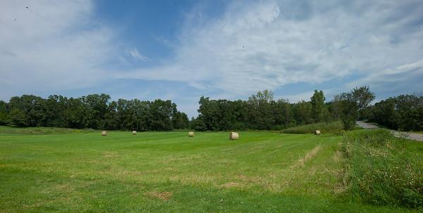 Haystacks and the Honey Farm