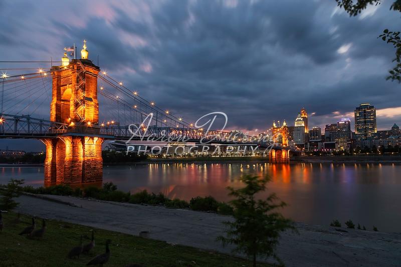 Roebling-04.jpg