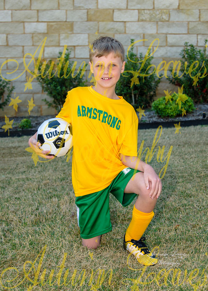 20190326 - # H1 1B Armstrong