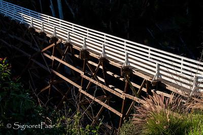 Bridges of San Diego