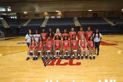 2018-19 ICC Basketball