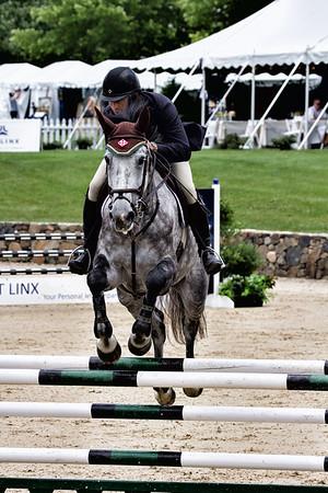 2017 Virginia Equine Scene