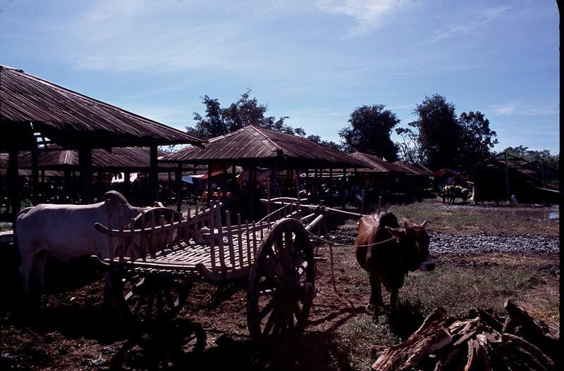 Myanmar1_112.jpg