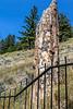 Petrified Tree Area, Yellowstone-Swan9 IMG_0956
