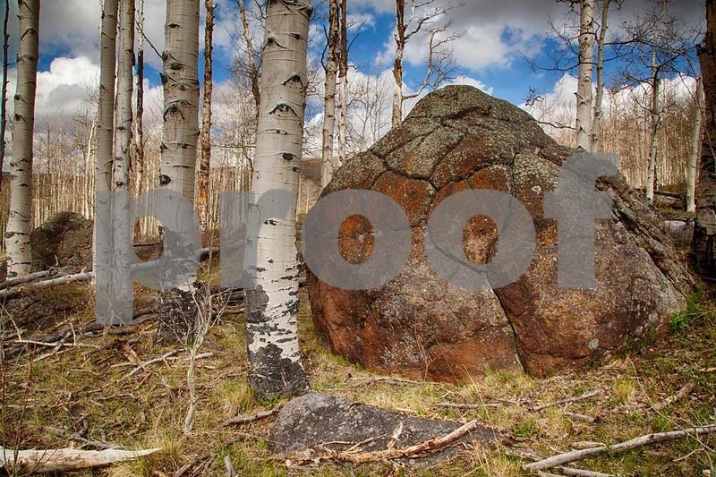 Boulder Mt. 7306_HDR.jpg
