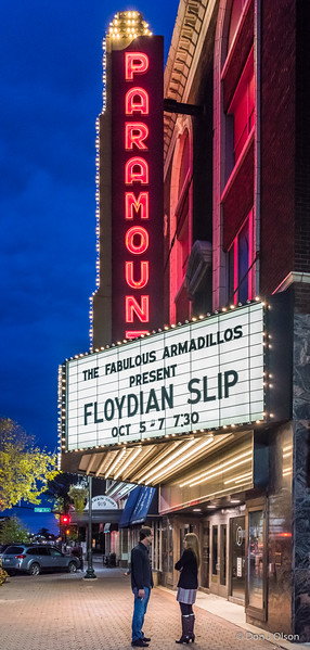 Floydian Slip 2017-The Fabulous Armadillos-Paramount, St. Cloud.