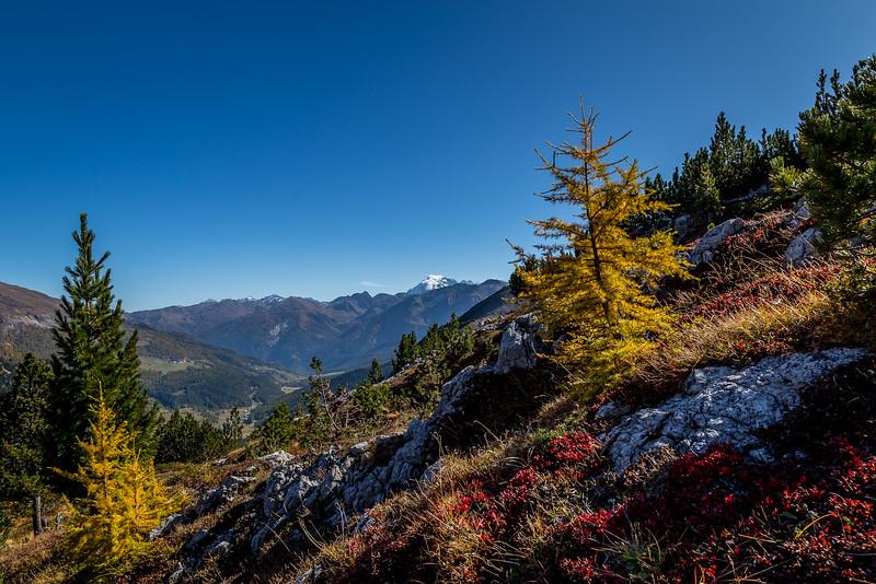 Auf dem Weg vom Ofenpass zur Alp Mora: Blick Richtung Münstertal