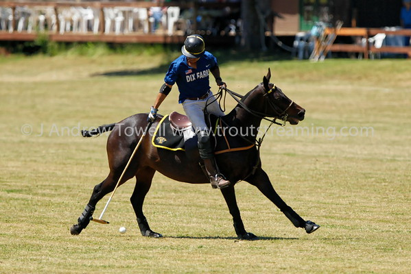 2017 Tacoma Polo Club Independence Cup