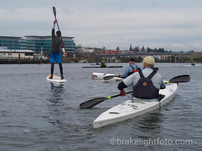 Paddling Victoria's Upper Harbour