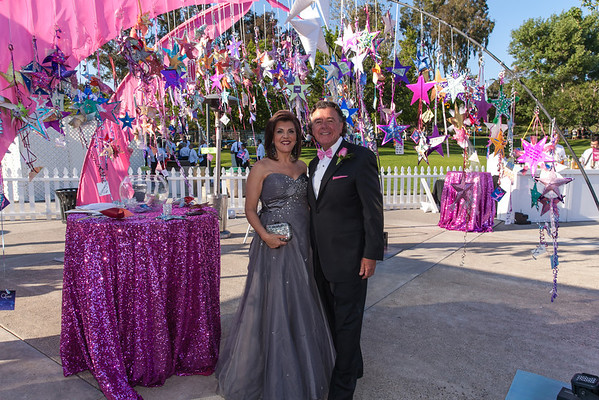 2013 The Pink Tie Ball at Lake Mission Viejo