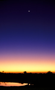 Twilight over Etosha