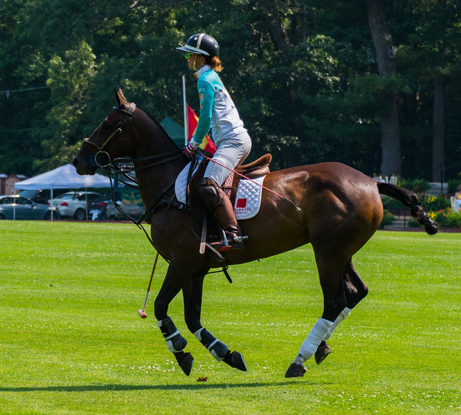 "Polo Player, "" No Feet on the Ground"""