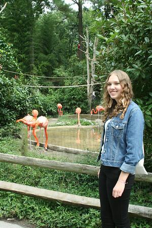 TV Show & Salisbury Zoo