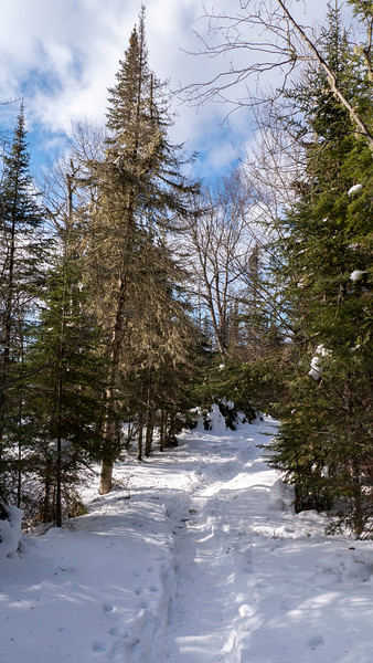 Sleeping-Giant-Provincial-Park-Winter-Hiking-03.jpg