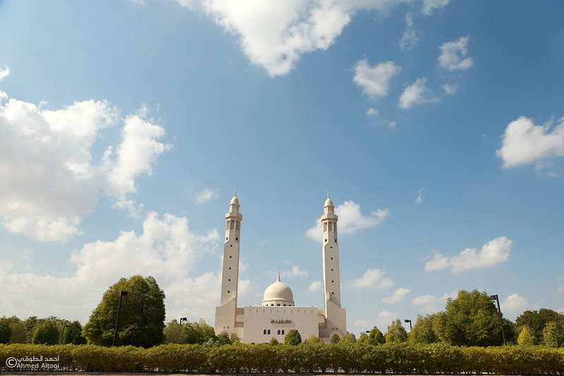 Saidah Mayzoon Mosque (4).jpg