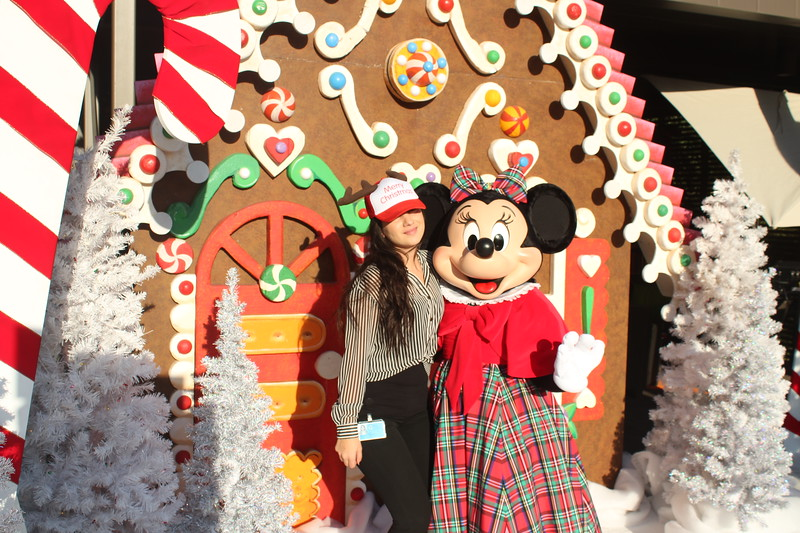 Walt_Disney_Imagineering_Holiday_2017_Individuals_ (20).JPG