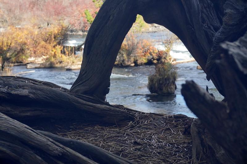 Benham Falls 2.JPG