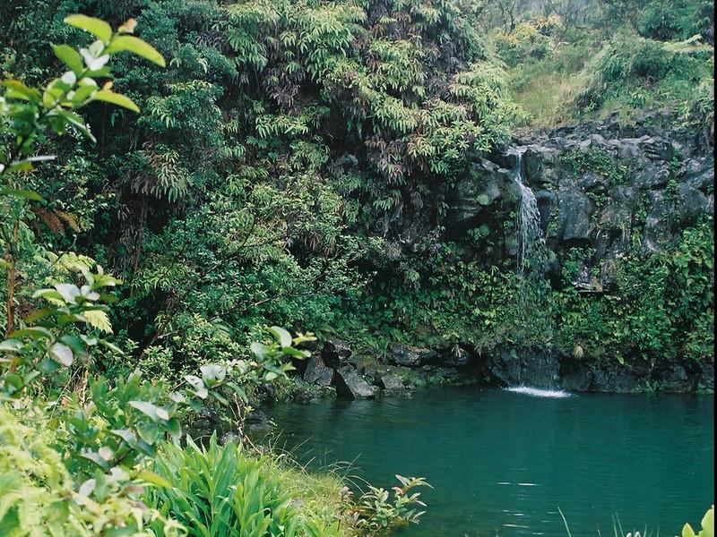 Hawaii-200.jpg