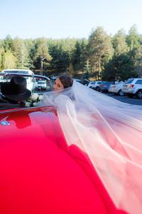 Kristy & Andrew Wedding