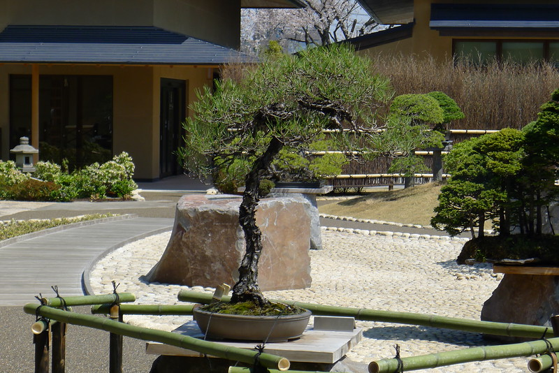 23-Japan2011_0909.JPG