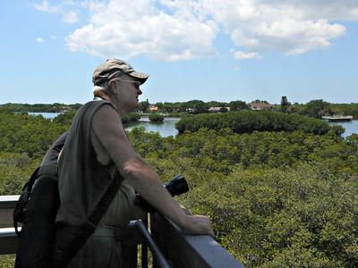 Weedon Island Preserve - Pinellas County