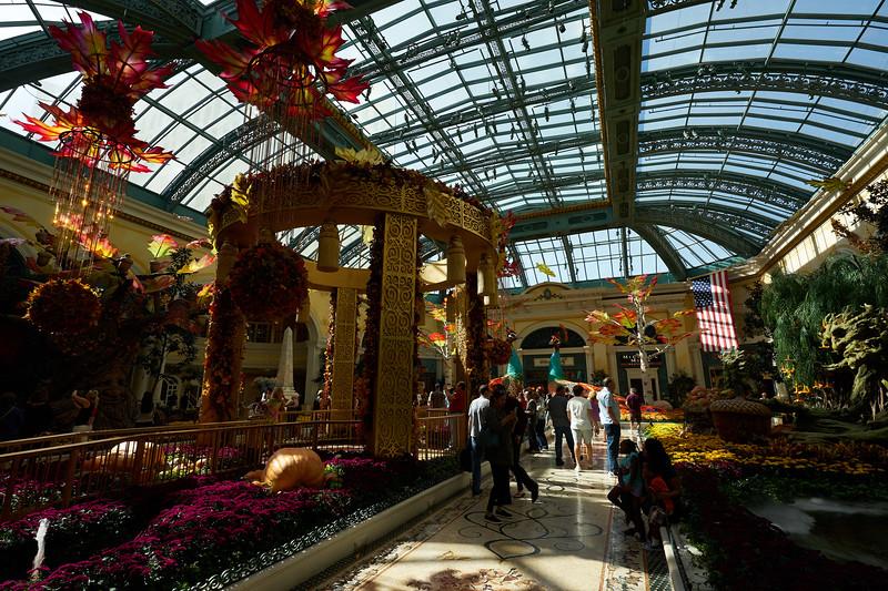 Vegas 0161.jpg