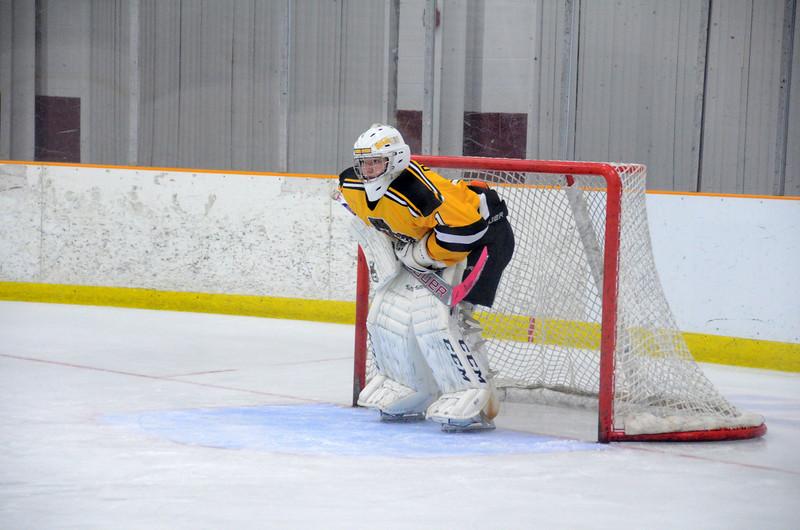 141018 Jr. Bruins vs. Boch Blazers-054.JPG