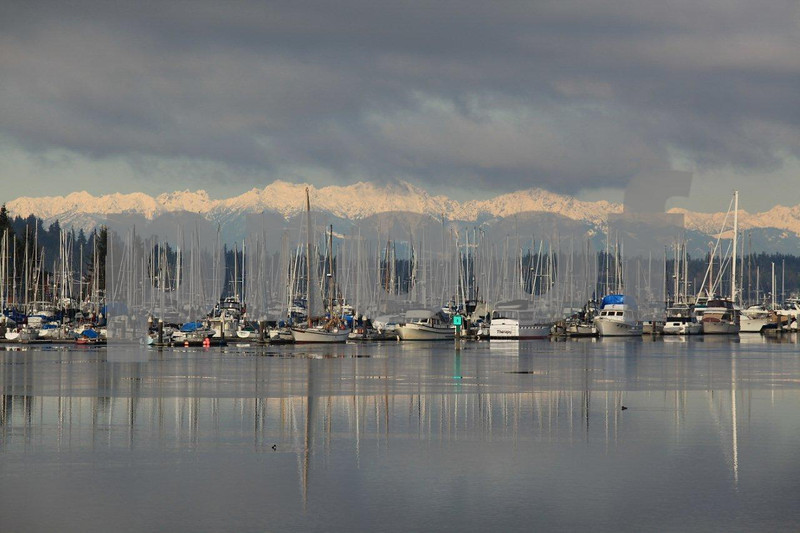 The view northwest from the Swantown Marina to the Olympic Mts.