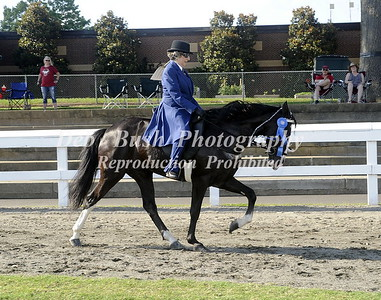 CLASS 7 COUNTRY PL AMATEUR SPECIALTY
