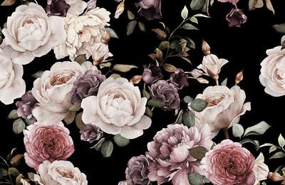 The Wild Bloom Studio Rebrand