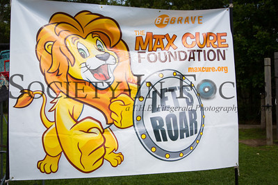 4th Annual Roar for a Cure Carnival Benefitting the Max Cure Foundation at the Ross School in East Hampton, NY on August 19, 2012