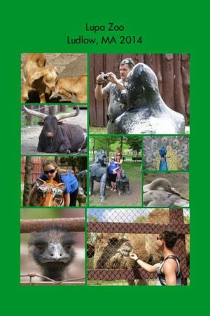 MA, Ludlow - Lupa Zoo