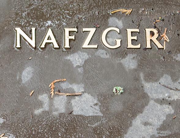Nafzger(Naftzinger) Family Burial Plot