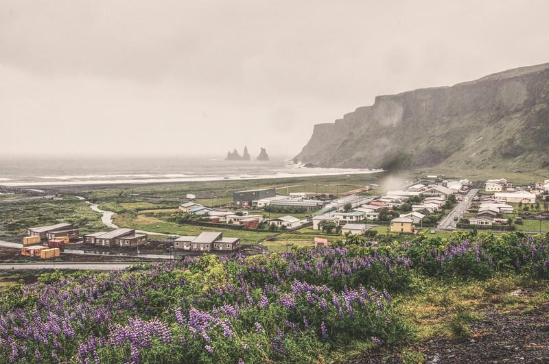 Iceland_Heather 4232.jpg